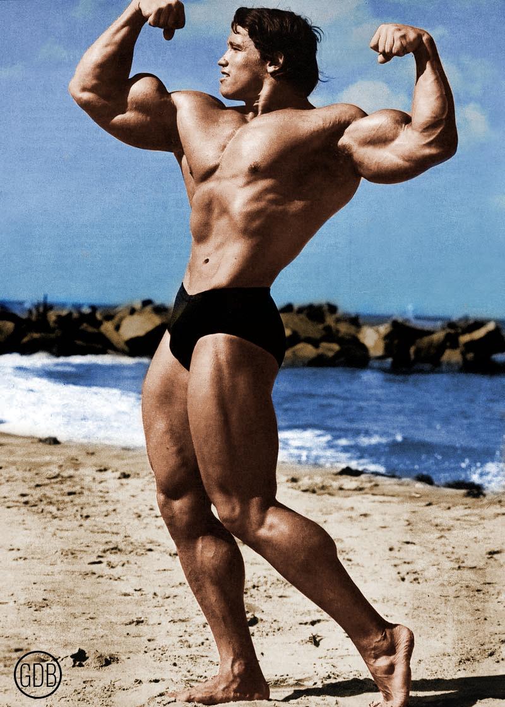 Arnold Schwarzenegger - Gianluca De Bianchi - Jeanzilla